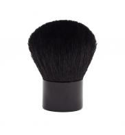 Kabuki brush Cameleon