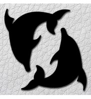 2 dauphins